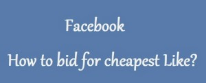 How-to-get-cheapest-bid-for-facebook-page-like